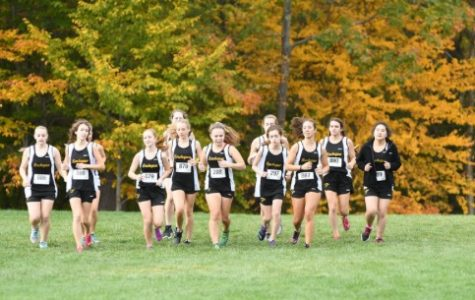 JV Cross Country Goes to States