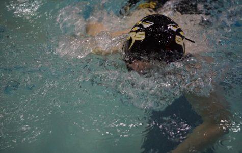 Sabers Swim to States