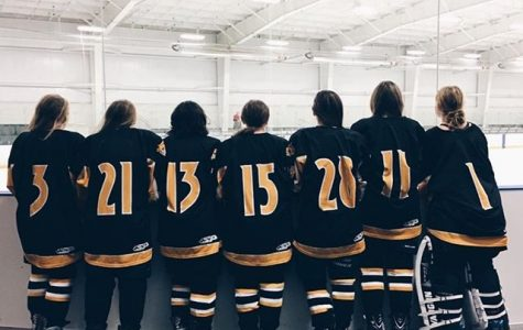Girls Ice Hockey Team off to a Good Start