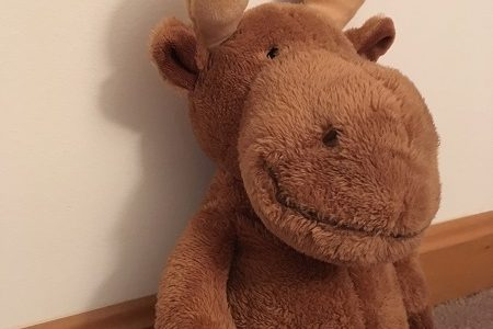 Once upon a time there was a moose, named Moose. He was small and soft and had big, squishy antlers.