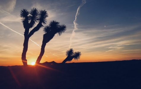 Souhegan Students Travel to Joshua Tree National Park