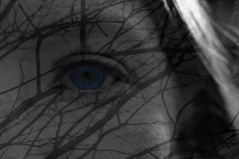 Jordan-Pitas Alexis 'Inside Her Eye' Digital Art Souhegan HS Silver Key Grade 9