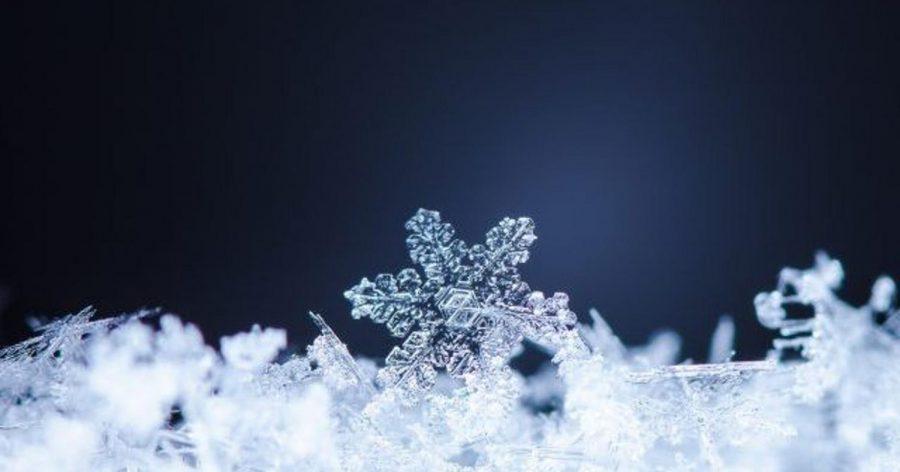 X-Snow
