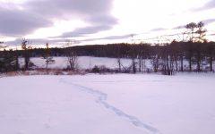 Winter Wonderland: A photo essay