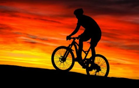 Join Mountain Bike Madness